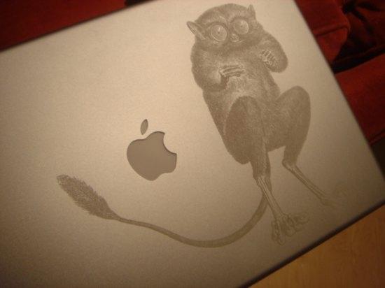 applelemur.jpg