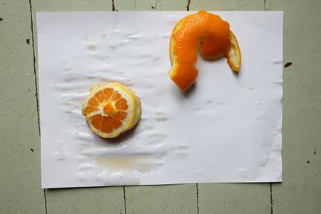 orange3-450-IMG_0383