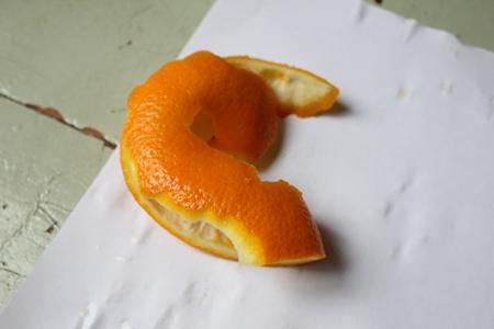 orange4-450-IMG_0384