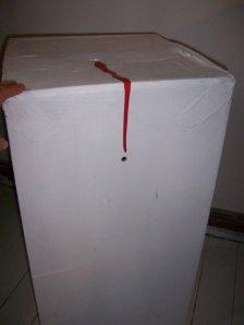box5-224.JPG