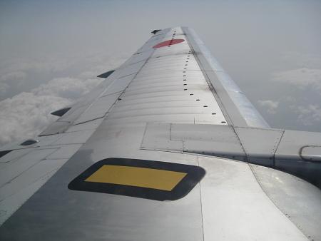 fluegel450.jpg